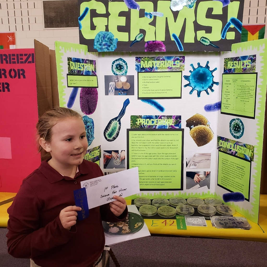 Anna Grace Paynter-First Place Experiments